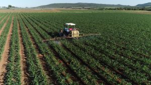 Monitor Crops Prometheanlabs Ca